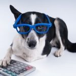 Alan Newcomb's Under-Utilized Pet Tax Deductions